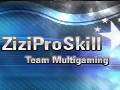 `ZiziProSkill
